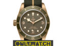 Tudor Black Bay Bronze One Sells for How Much? Only Watch 2017 Delivers.